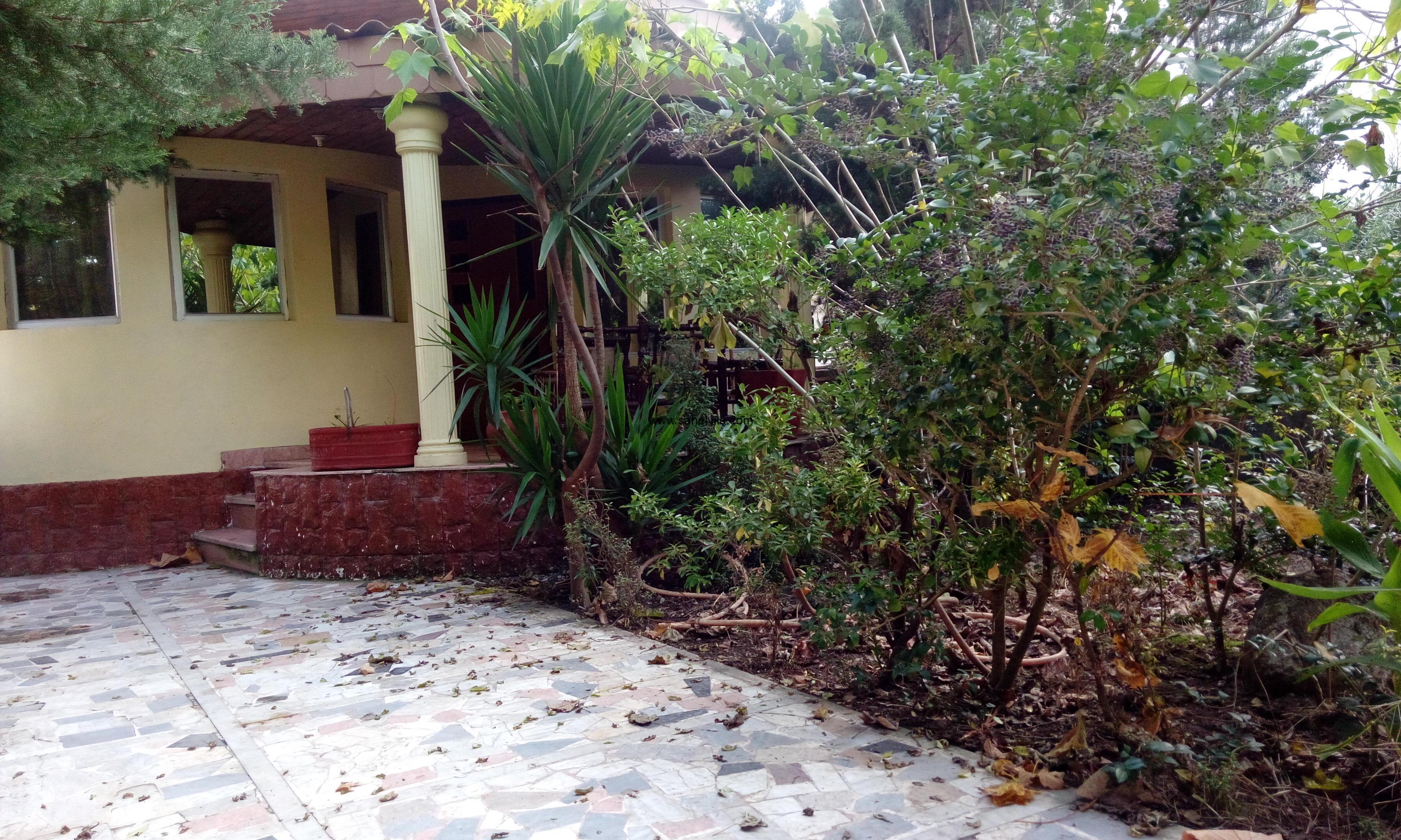 اجاره ویلا کلارآباد متلقو (7)